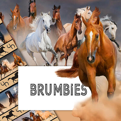 Category Image Brumbies